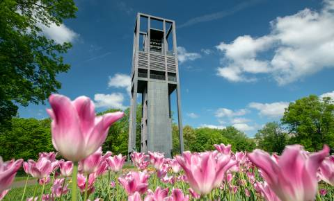 Netherlands Carillon